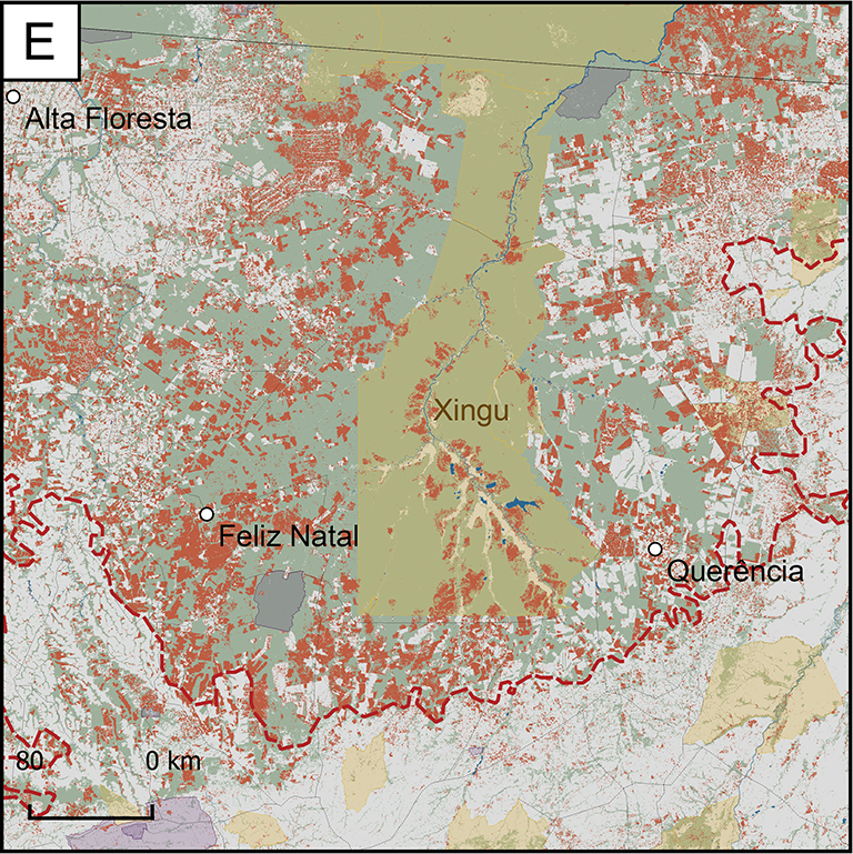 Map of Focus Research Area E: the area is in the southeastern portion of the region. It has experienced a great amount of forest loss between the years 2000 and 2017. Land of the indigenous Xingu people runs through the middle of the area from north to south. The area includes the cities of Feliz Natal and Alta Floresta.