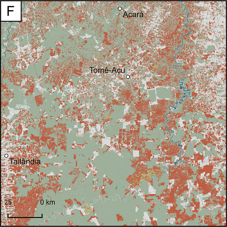 Map of Focus Research Area F: a small area near the east coast and immediately south of the city of Belem. It has experienced a great amount of forest loss between the years 2000 and 2017. The area includes the cities of Acara and Tome-Acu.